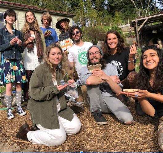 Club Mushroom photo